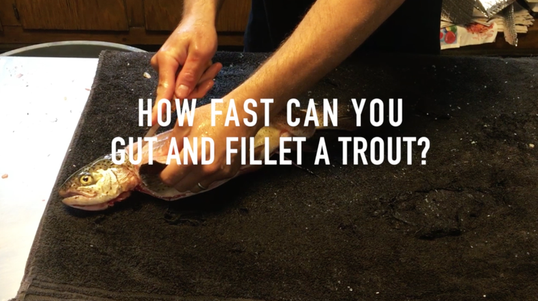 fillet trout, fishing, trout fishing, how to fillet a trout,