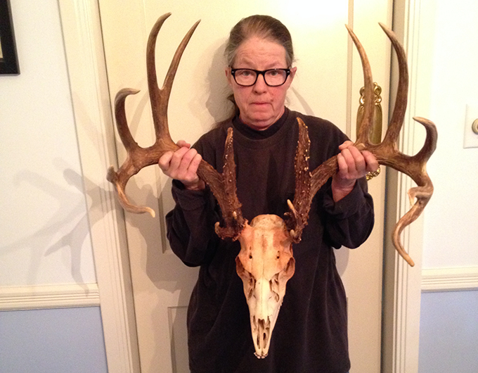 Shed Antlers, According to Paula