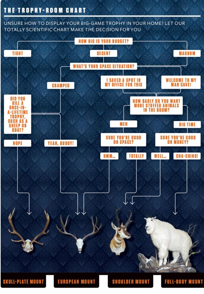 The Trophy-Room Chart: Size Up Your Prize