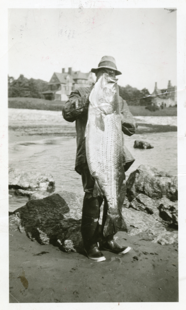 Black and white image of a fisherman holding up a striped bass.