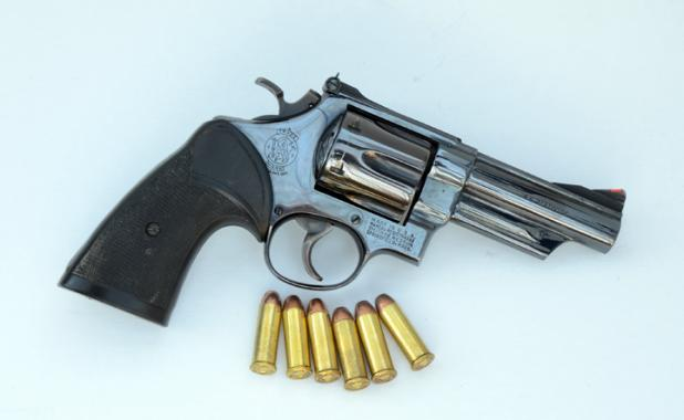 Smith & Wesson Model 29/629