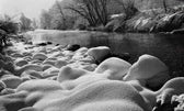 Killing the White River
