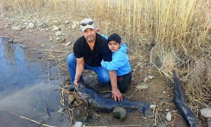 New Colorado State Record Flathead Catfish