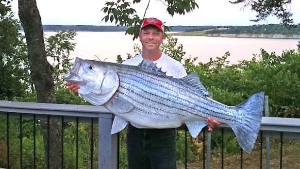 httpswww.fieldandstream.comsitesfieldandstream.comfilesimport2014importBlogPostembedHT-rodney-ply-stripped-bass-largest-record-thg-130726-16×9-608-jpg_141103.jpg