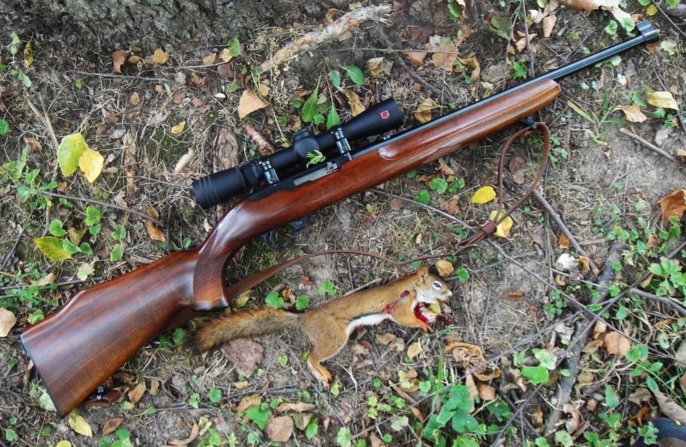 Gunfight Friday: Rugers Against Squirrels