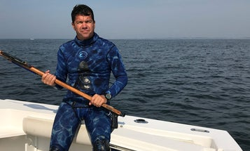 Make a Stab: Spearfishing for Striped Bass in New York Harbor