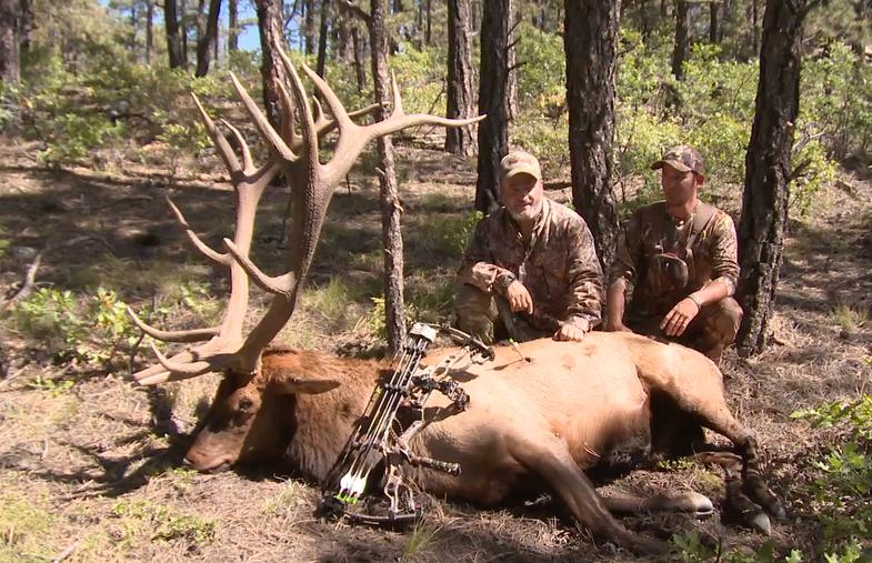 Dan Burzon 413 Bull Elk