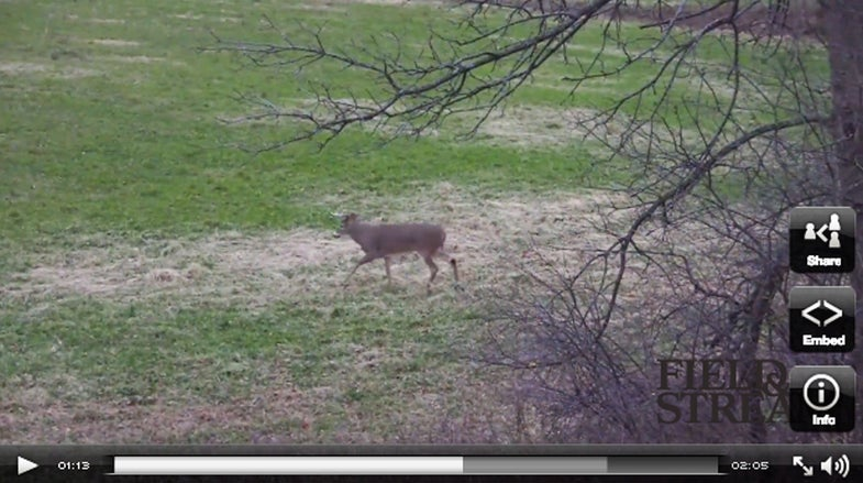 Video: An Opening Day 10-Point