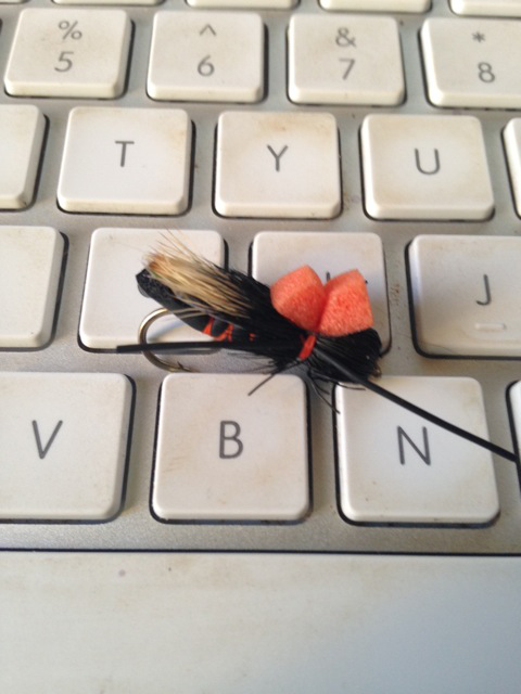 The Pros and Cons of Buying Flies Online