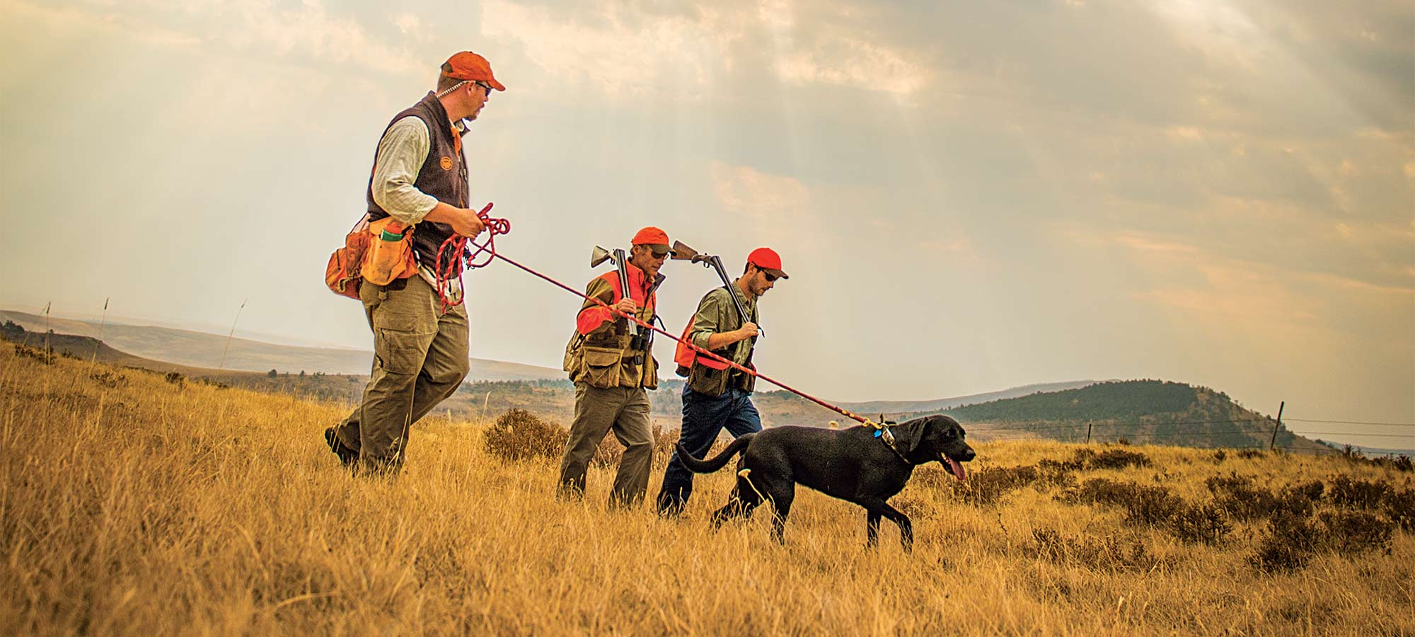 prairie grouse hunters and dog