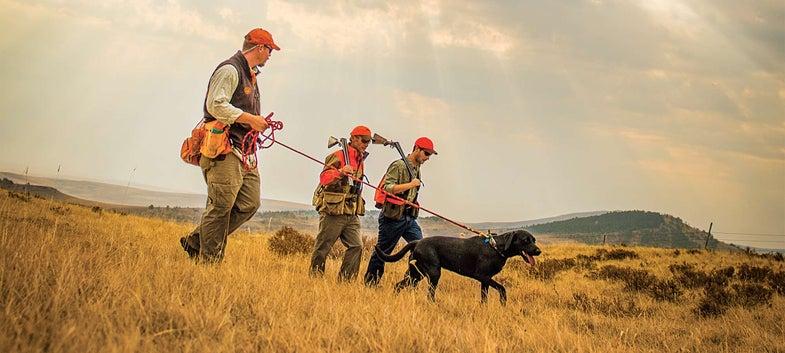 prairie grouse hunters and dog