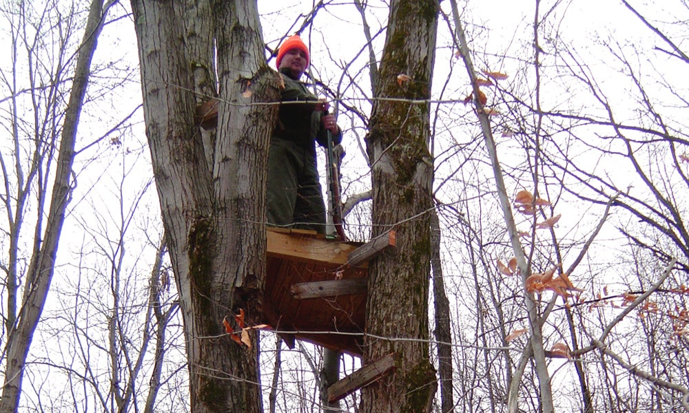 Sitting Pretty: 18 Late-Season Treestand Tips