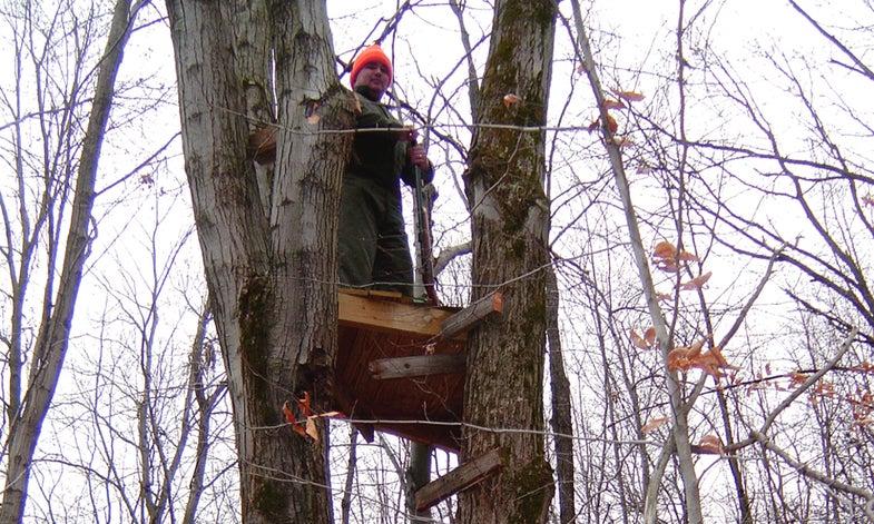 Sitting Pretty: 18 Late-Season Treestand Tips