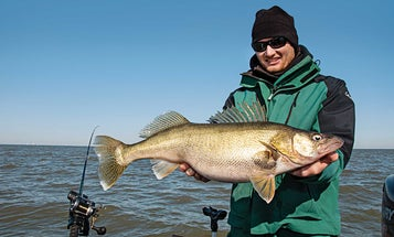 Four Tricks for Catching Spring Walleyes