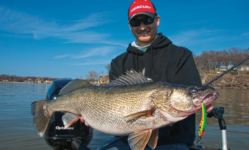 Catch Monster Walleyes this Spring with Crankbaits and Jerkbaits