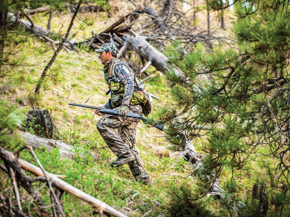 public land turkey hunting