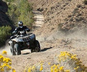 ATV Trip Guide: Silver City, Idaho