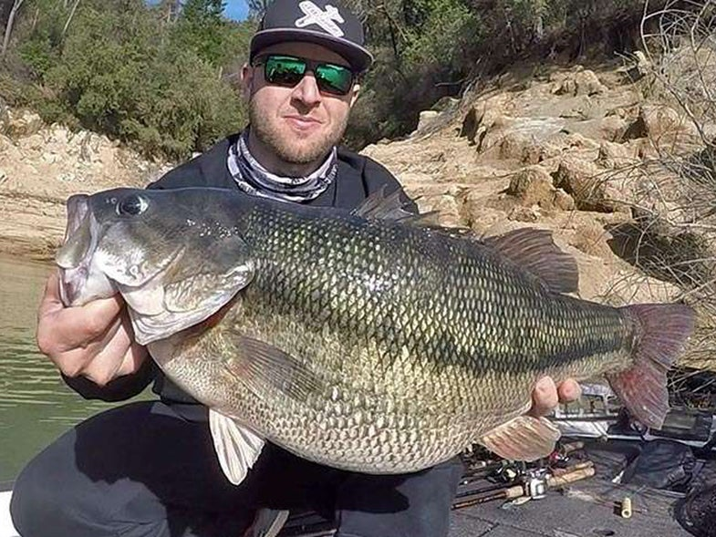 record spotted bass
