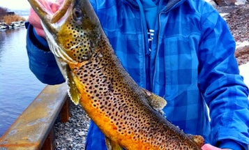 The 50 Best Photos From Field & Stream's Catchbook Fishing App  (October 2012)