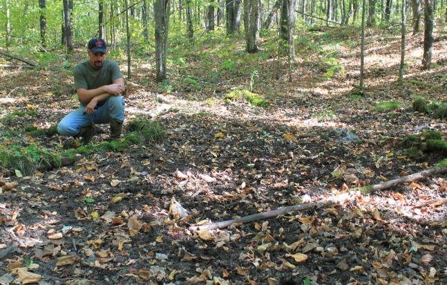 httpswww.fieldandstream.comsitesfieldandstream.comfilesimport2014importBlogPostembedPower_Scrape_III-Big_Woods-Sept_2012.jpg