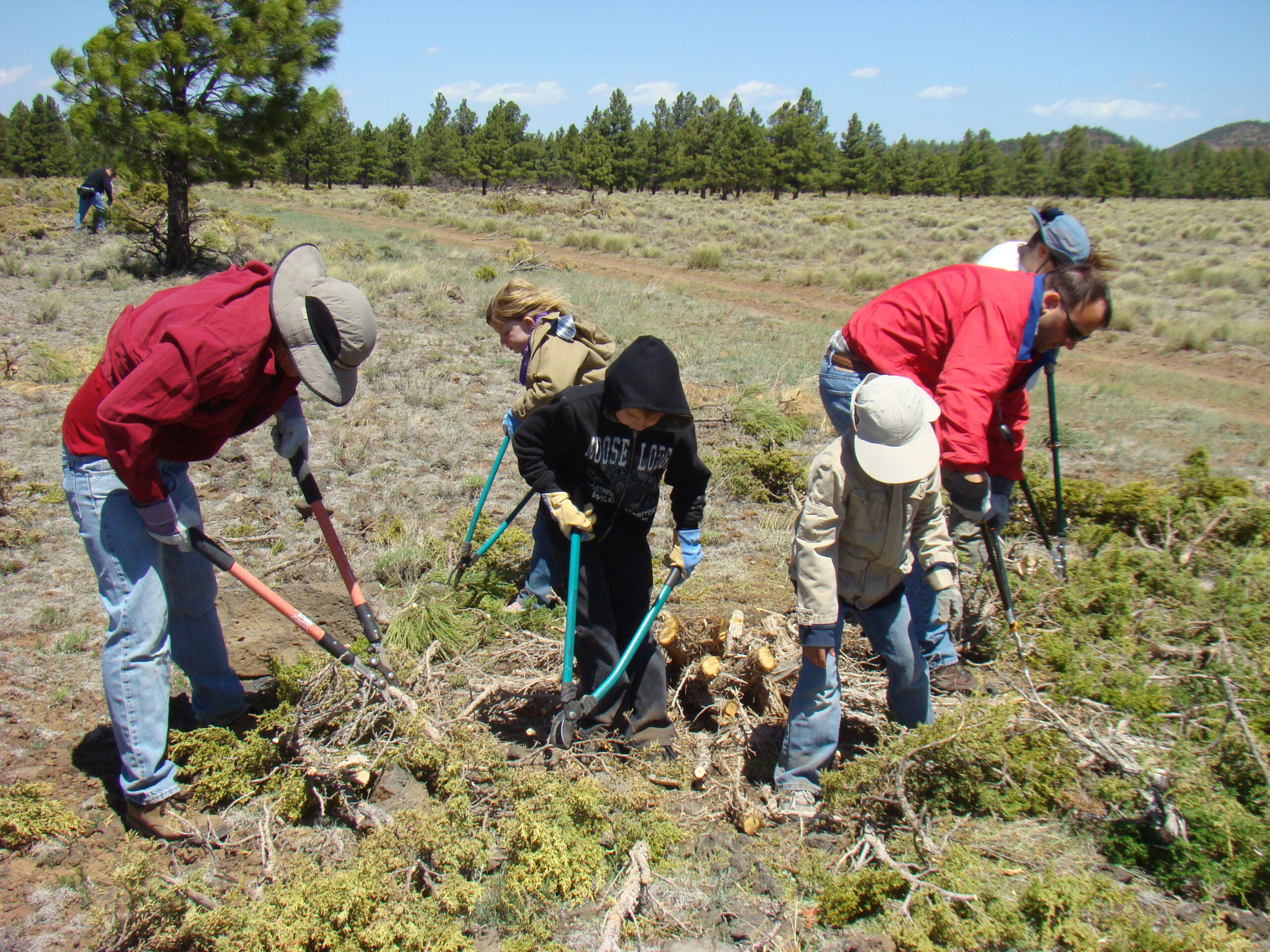 Hero for a Day 2014: Restoring a Wet Meadow for Arizona Elk