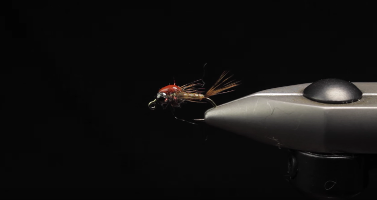 fly fishing, spring flies, best flies for spring,