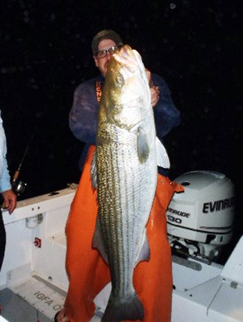 Greg Myerson Sets New Length Record for Striped Bass