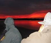 South America: The Summer Bird Hunting Destination