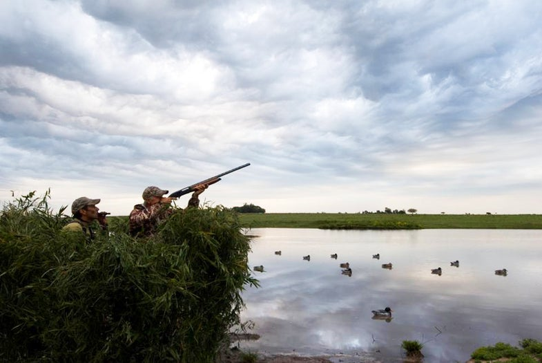 Why You Miss Ducks (And Other Insights From Our Waterfowl Guide Survey)