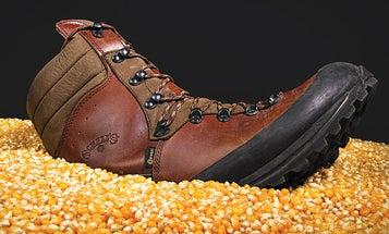 Reader Tip: Use Corn to Deodorize Your Kicks