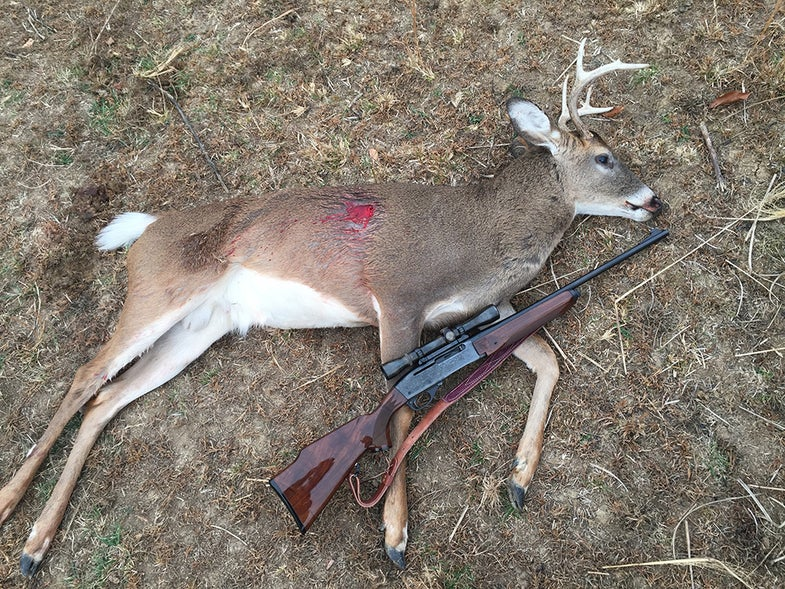 dead buck and Remington 7400