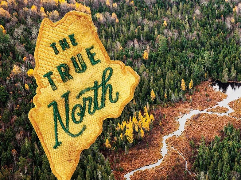 The Maine North Woods