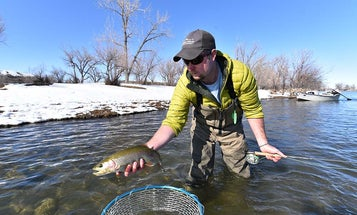 5 Great Tailwaters to Fish as Temperatures Drop