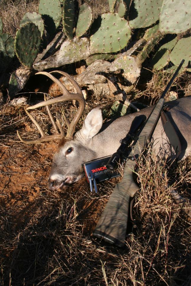 httpswww.fieldandstream.comsitesfieldandstream.comfilesimport2014importBlogPostembedRR_2008_December_South_Texas_8-point_rifle_053.jpg