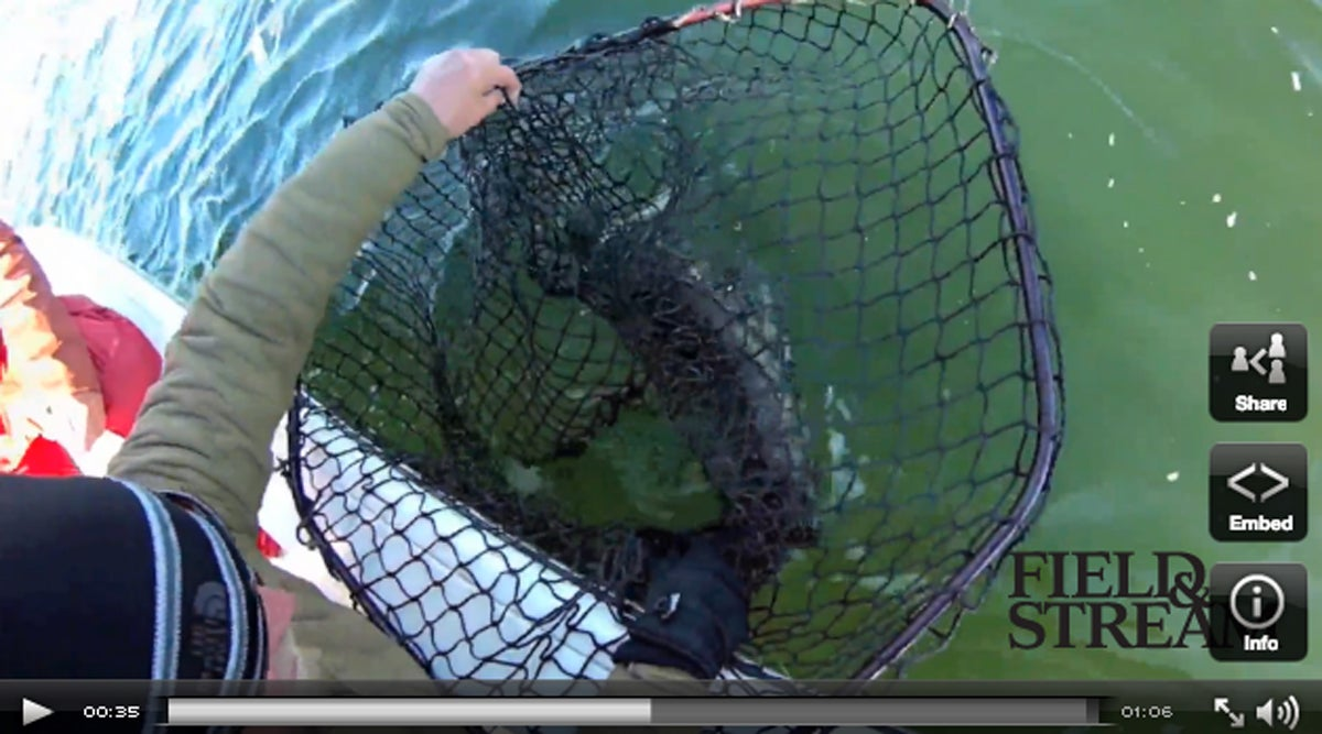 Exclusive Video: Potential World-Record, 57-Inch Muskie Caught in Minnesota