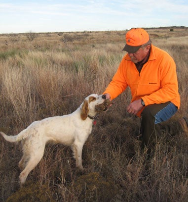 httpswww.fieldandstream.comsitesfieldandstream.comfilesimport2014importImage2009photo23Quail_21.jpg