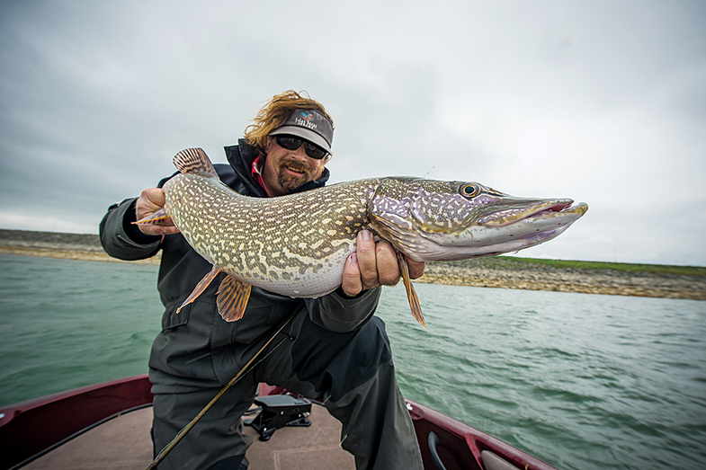 spring pike fishing, pike fishing, how to find pike in spring, spring pike,
