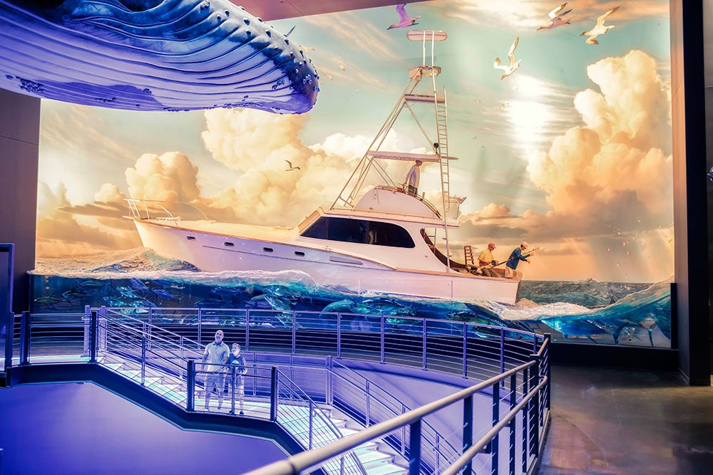 great oceans hall Wonders of Wildlife National Museum & Aquarium