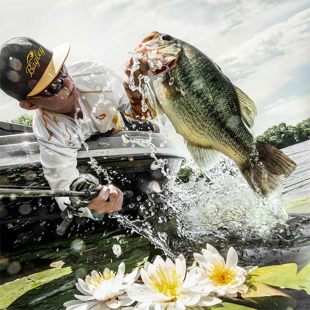 bass fishing, fishing technique, fishing strategies