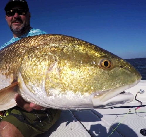 Hook Shots: Mississippi Gulf Coast Rumble