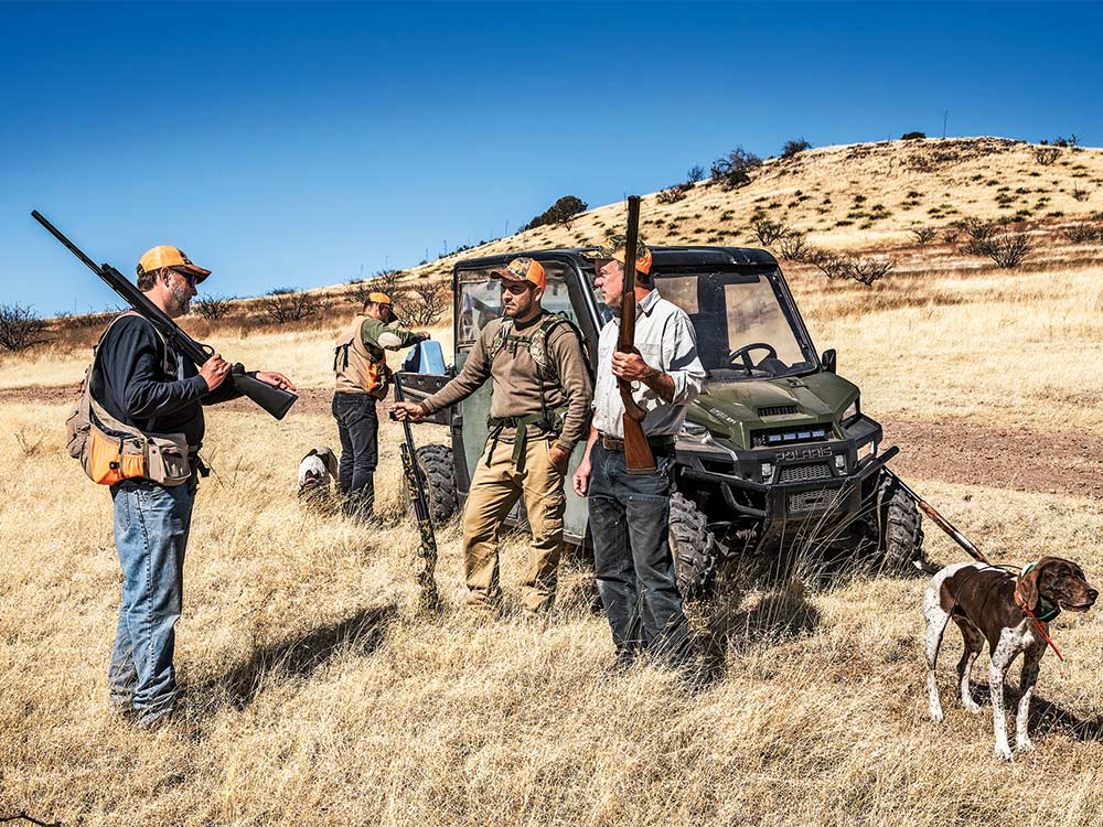 quail hunters planning a hunt