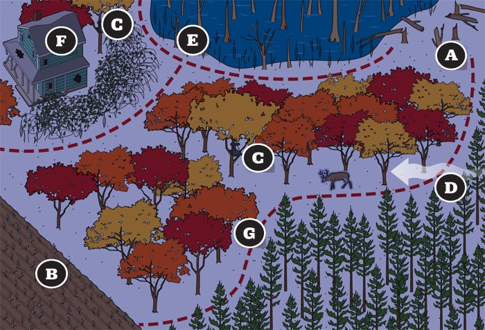 How and Where to Hunt a Trophy Buck That Only Shows Up at Night