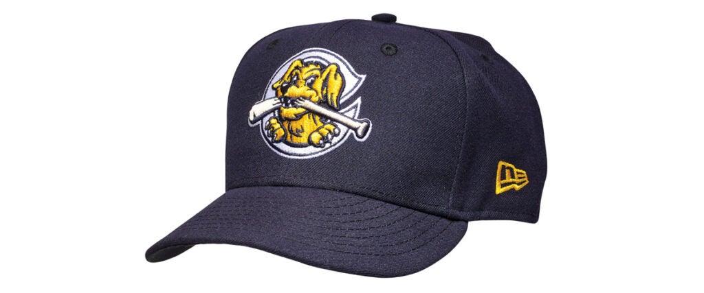 minor league baseball fishing, fishing road trips, baseball road trips, fishing and baseball, Charleston Riverdogs
