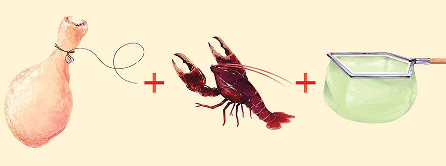 How to Catch More Crayfish and Keep Them Alive