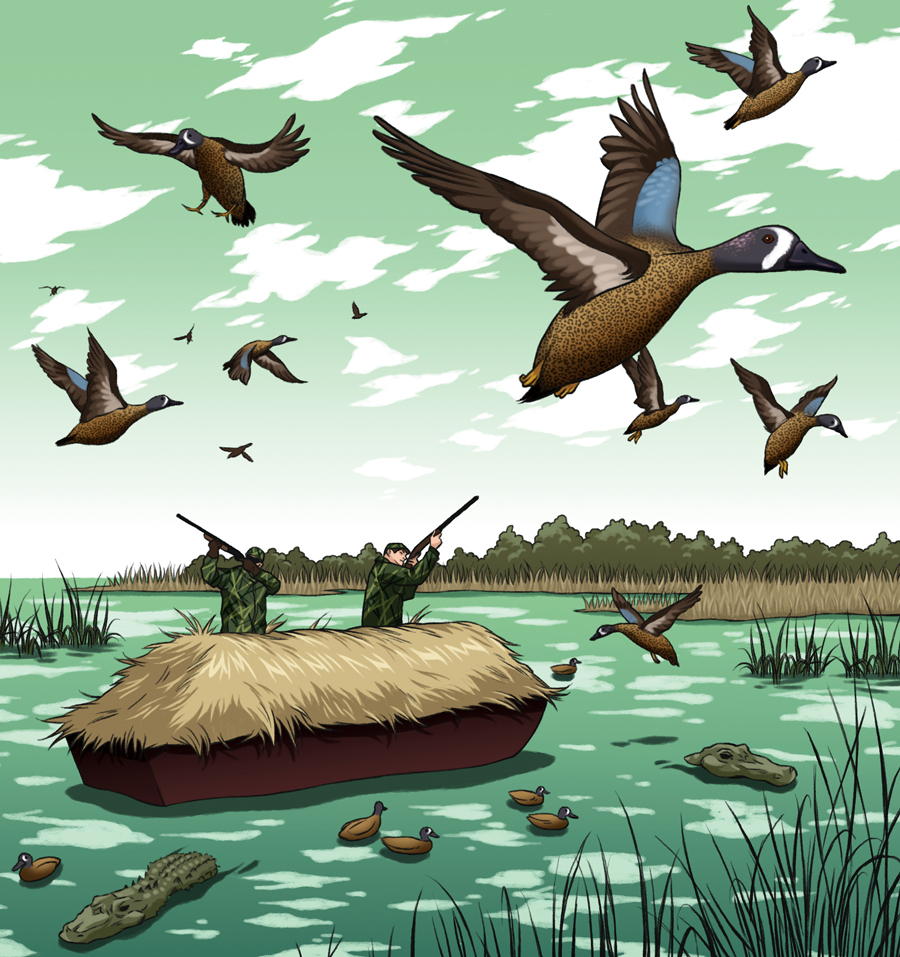 Fowl Play: Hunting the Teal Migration