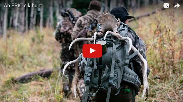 Video: Epic Elk Hunt