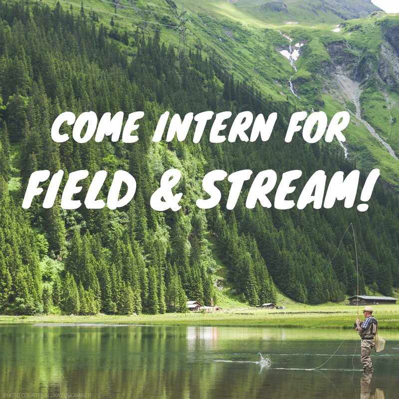 field & stream intern