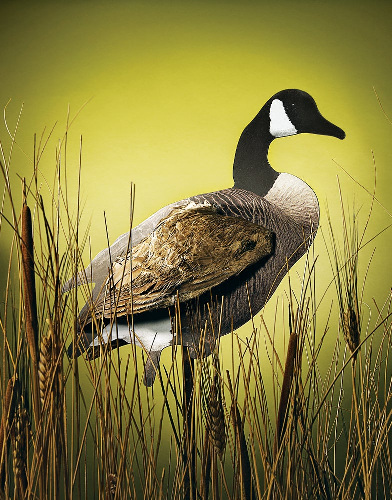 Geese Tip: Add Wings To Silo Decoys