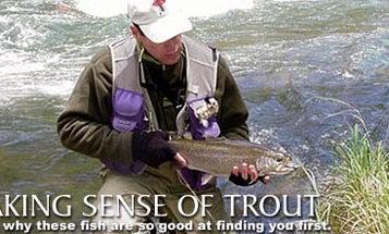 Making Sense of Trout