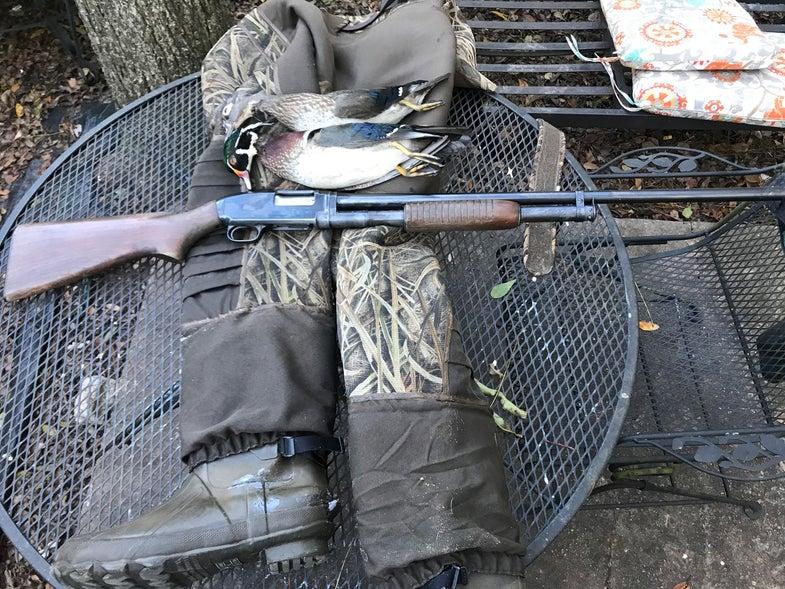 winchester model 12, shotgun, Thomas Crossley Johnson
